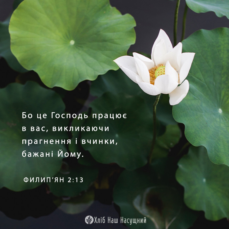 Share ODB 2020-05-31